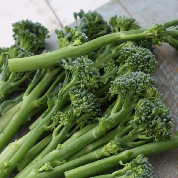 Green Sprouting Calabrese Broccoli florets on a table