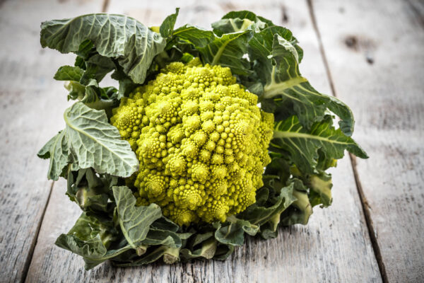 Romanesco broccoli head on a grey table