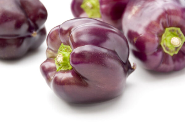 Purple Beauty Capsicums on a white background