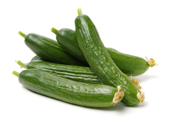 A bunch of picked Lebanese cucumbers on a white background