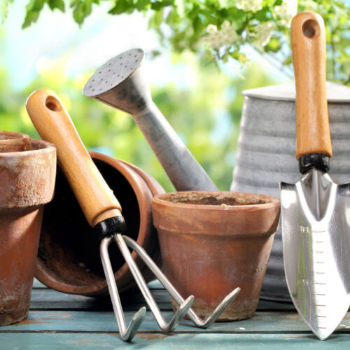Outdoor gardening tools on table