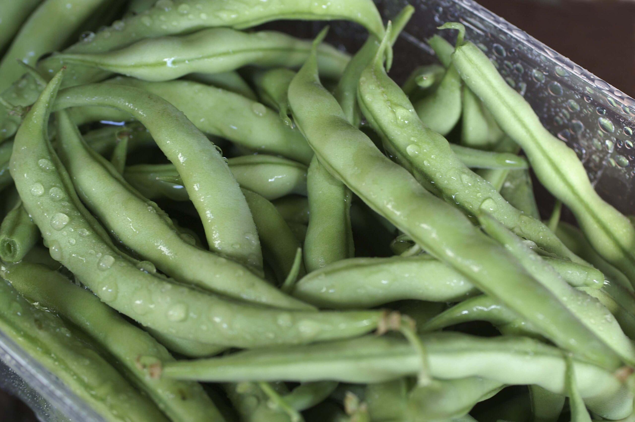 Fresh Strike beans in a bowl