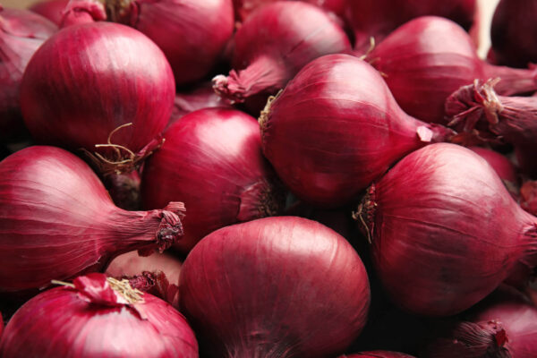 Lots of red ripper Onions piled together with its vibrant red skins