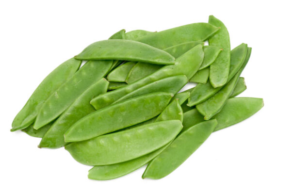 Mammoth melting snow peas on a white background