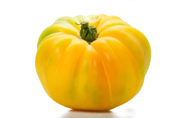 A single Jubilee Yellow tomato on a white background showing its lovely colours