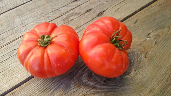 Rouge De Marmande tomatos on a wood table.