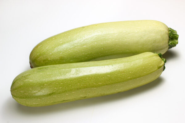 Two very healthy lebanese zucchini fruit on a white background.
