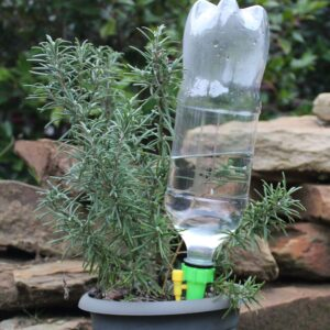 Watering Spikes with bottle attached watering the garden