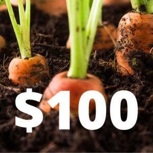$100 Gift Voucher sign
