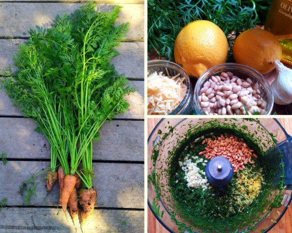 Carrot Top Pesto Ingredients